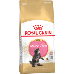 Royal Canin Gatito Maine Coon